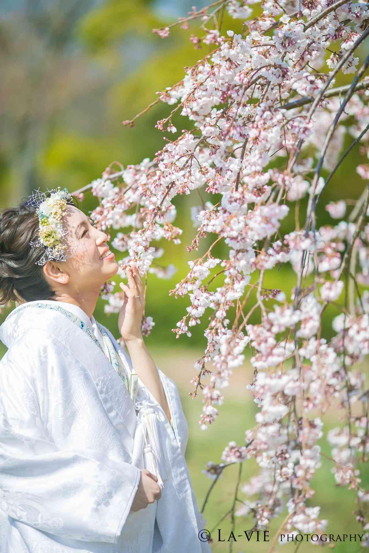大阪大仙公園の春